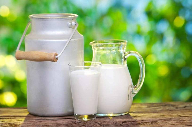 bà đẻ có được uống sữa tươi